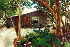 The Cayman Cottage